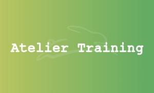 stefan-haeseli-atelier-training