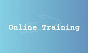 stefan-haeseli-online-training